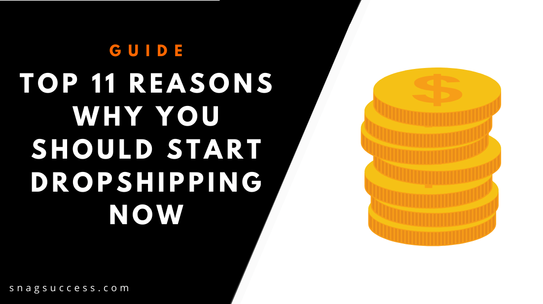 Top 11 Reasons Why You Should Start Dropshipping Now